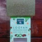 Earth Therapeutics Loofah Exfoliating Aloe Vera & Kiwi Soap
