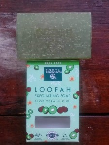Earth Therapeutics Loofah Exfoliating Aloe Vera & Kiwi Soap